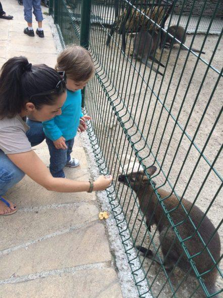 parc animalier monaco