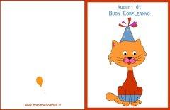 Biglietti auguri compleanno: gatto con maglia rossa
