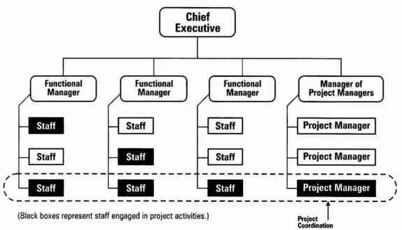 Types of Organizational Structures Management Study HQ
