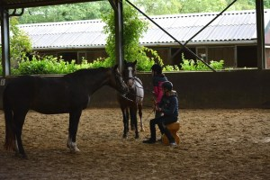 ponykamp 2015 (78)