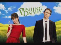 Pushing-Daisies-FI