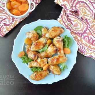 Apricot Glazed Chicken Wings