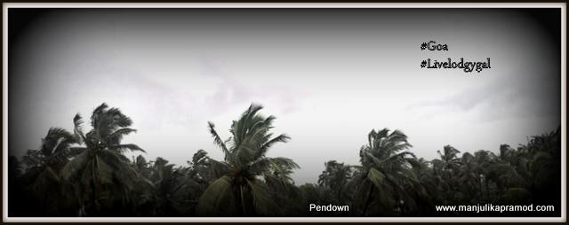 Goa Again!