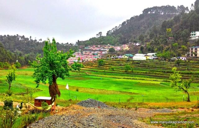 Nature, Walk, Nature trail, Bhimtal, Sattal