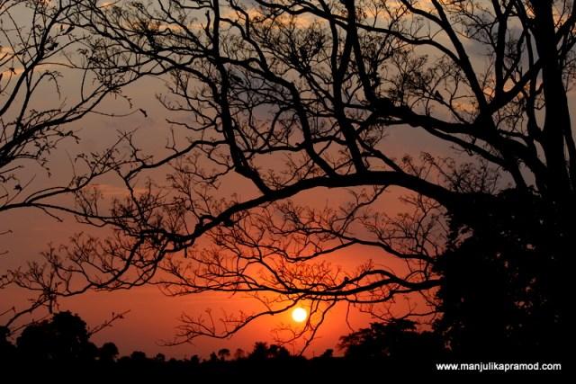 Sunset in Singinawa Jungle Lodge