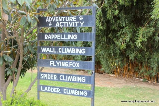 Adventure, Safari, Wilderness, Wildlife