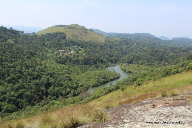 Thekkady, Cardamom, Trail, Spices, Travel