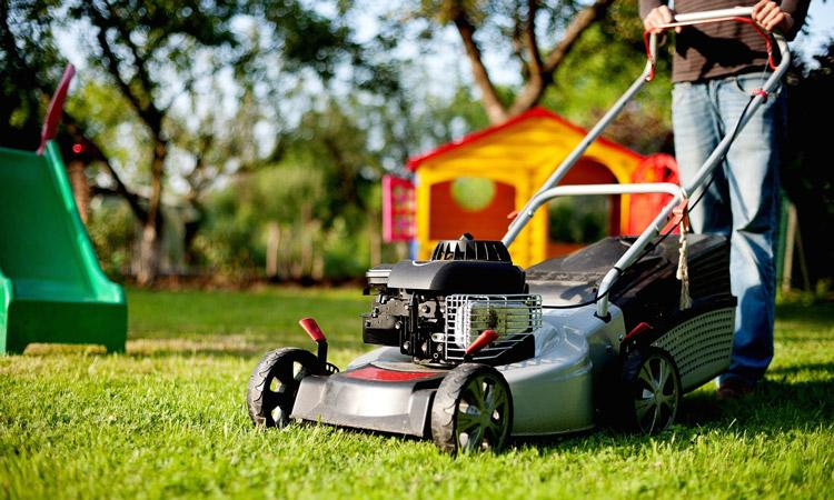 Four Ways to Make Yard Work Easier and More Fun this Summer