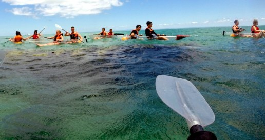 Australian Sunset Safari's lets you explore Moreton Island and the Tangalooma Shipwrecks in transparent kayaks!