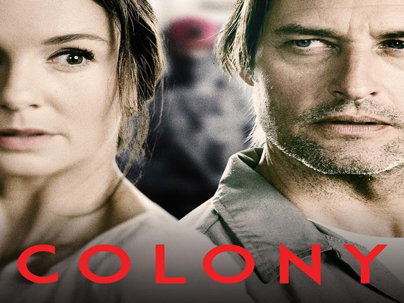 colony 800 600