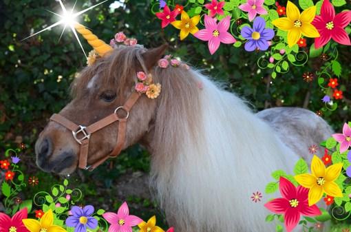 Unicornio con flores