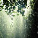 barish rain images9