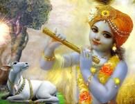 Shri Krushnachi Aarti-Shri Krushnachi Aarti is sung in the glory of god Shri Krishna known as kanha who is the eighth avatar of Supreme God vishnu also Krishna is the...