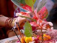 Vat Pournima : Vat Pournima is a festival celebrated by women in the month of Jesht (May-June). On the day of Wat purnima, married women observe a fast for well-being...