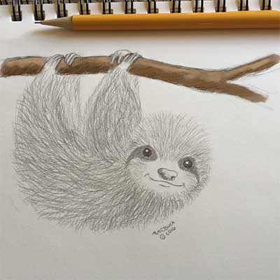 sloth400 color