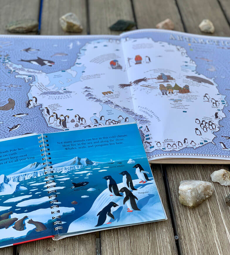 Learning about Penguins beautiful animated film + books Maria