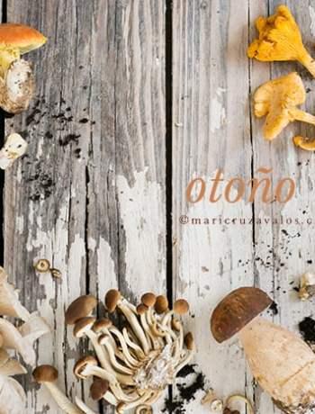 various_mushrooms