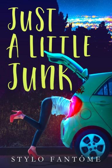 just-a-little-junk-ebook-cover