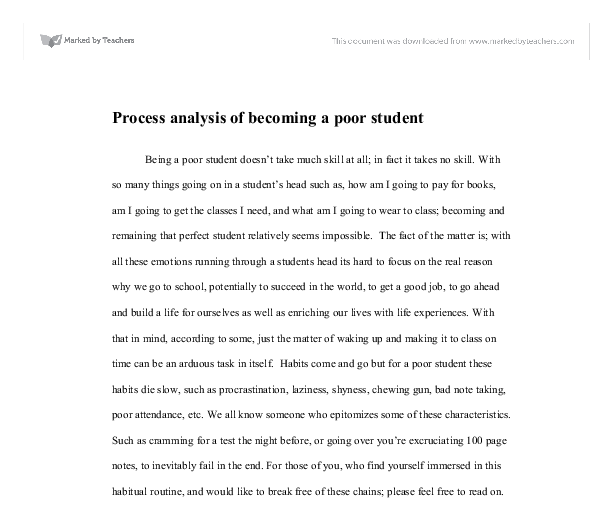 essay edit  Sample   Paragraph Essay Outline
