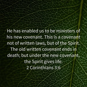 spirit life law