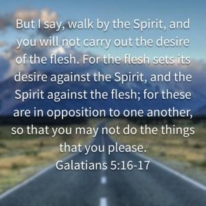 Galatians spirit flesh