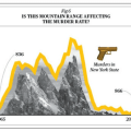The Best Infographic Ever: New York murders and mountains