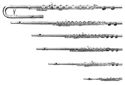 Finding Your Flute (How to Choose, Rent, Buy a New or Used Flute)