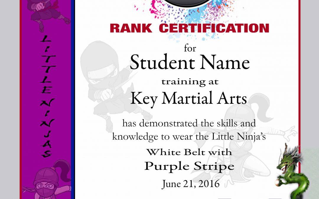 Martial Arts Certificate Template - mandegarinfo