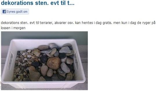 dba gratis ting sjælland