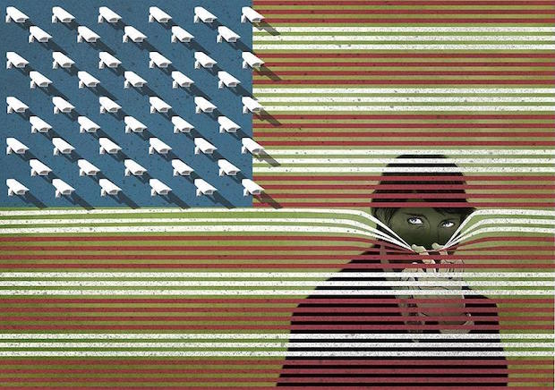 surveillance flag