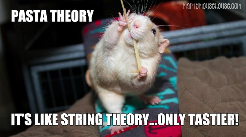 Pasta Theory