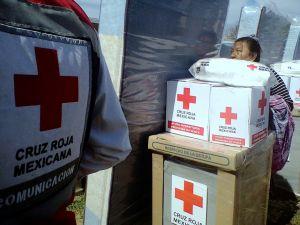 Cruz Roja despensas