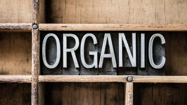 The word organic on wood background