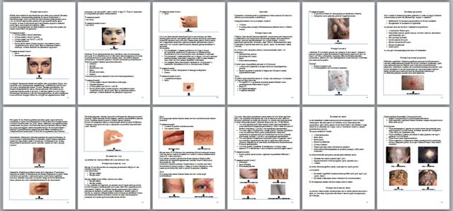anatomia per il lavoro di massaggiatore e estetista