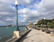 """Este sábado """"Arrecife camina"""" con más de 200 mayores por el paseo marítimo"""