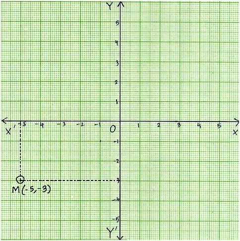 Plot Points on Coordinate Graph Any Point on x-axis Any Point on - math graph paper