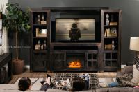 "20"" Remote Controlled Contemporary Fireplace Insert in ..."
