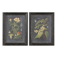 Two-Piece Floral and Leaf Print Framed Wall Art | Mathis ...