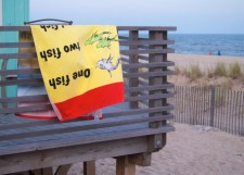 One fish, two fish (Dr. Seuss makes an appearance on Fire Island)