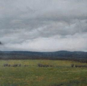 Untitled (Field)