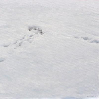 Winter Hare