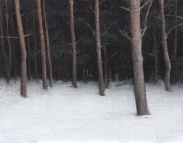 Woods I