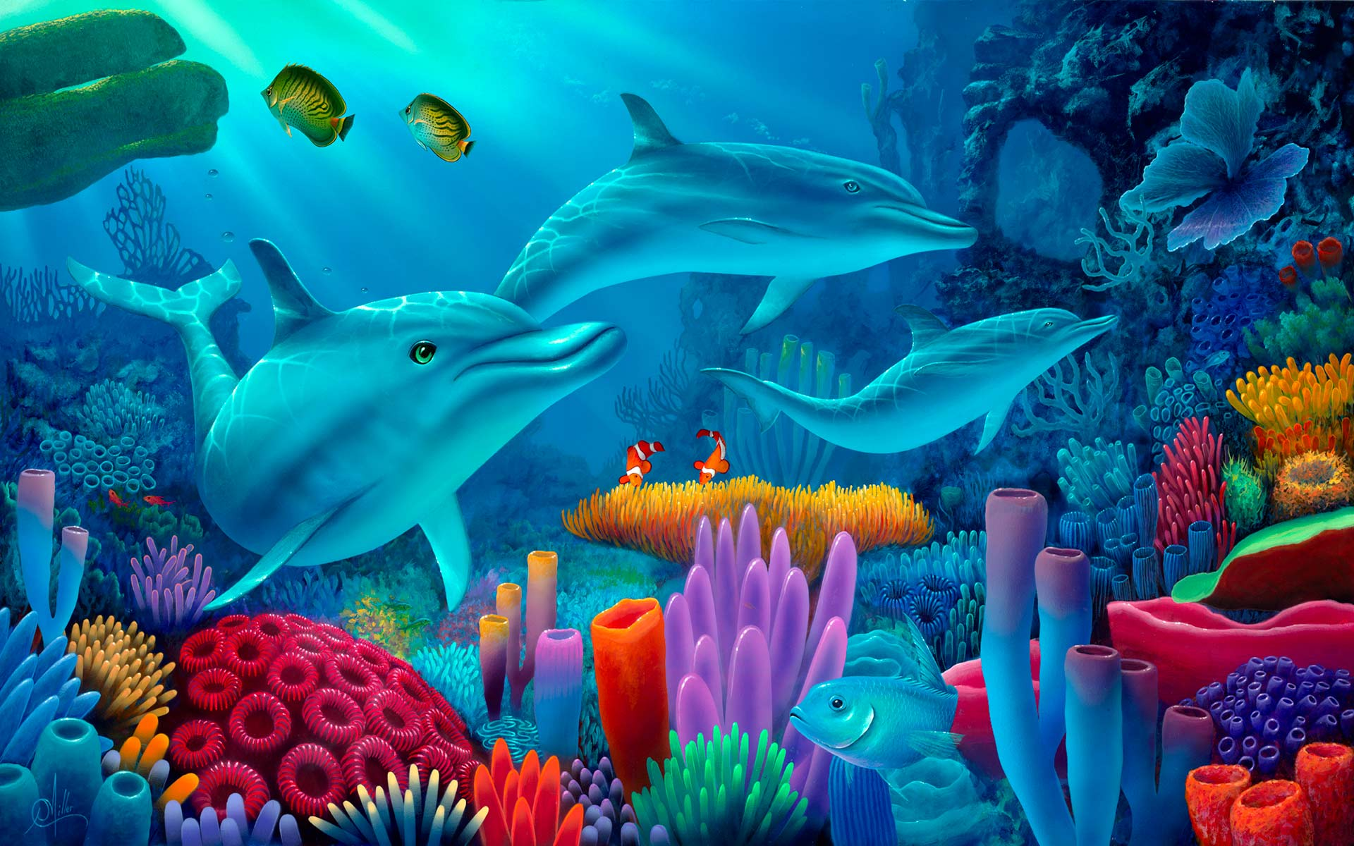 My 3d Fish Live Wallpaper Free Download Dolphin Wallpaper
