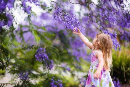 springtime activities 1