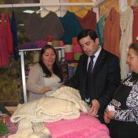 INDAP abrió concurso para que artesanos realicen inversiones