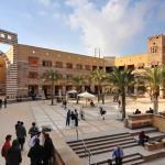 American University, Cairo