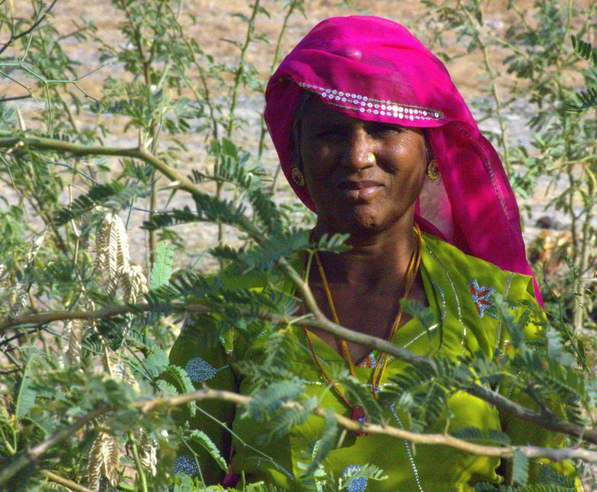 A Bishnoi woman from Salawas