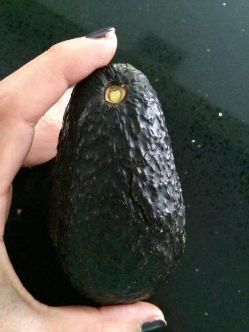 how to tell when an avocado is ripe buzzfeed