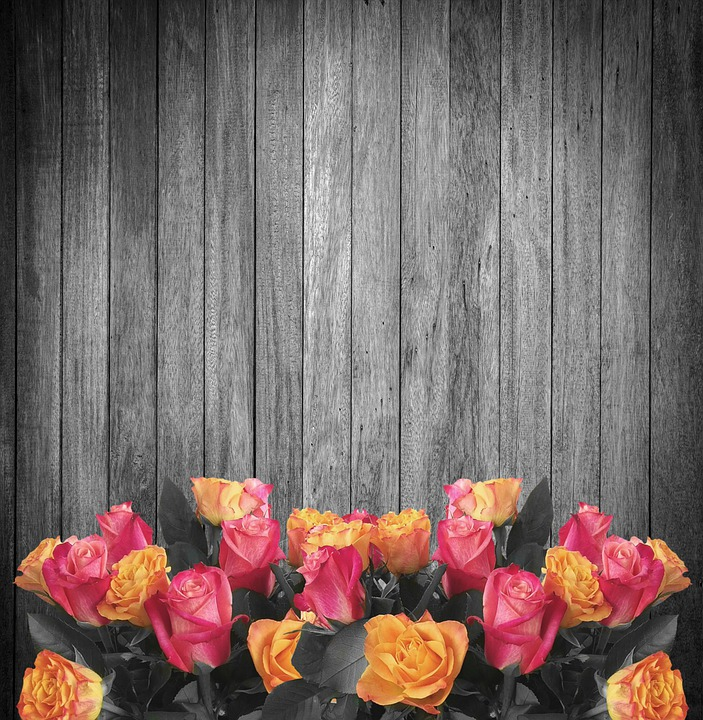 Black Wood Wallpaper Free Photo Black And White Flowers Roses Background Wood