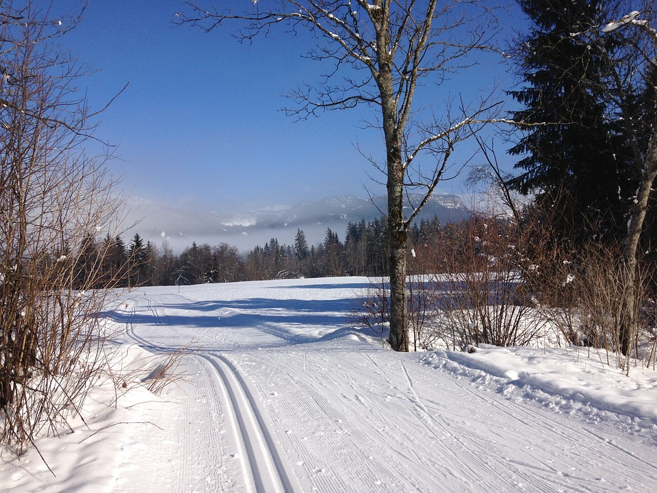 Iphone 4 Winter Wallpaper Free Photo Trail Winter Cross Country Skiing Max Pixel